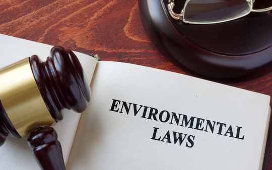 Government Postpones The Environment Bill Again?
